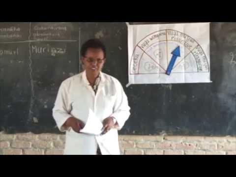 Teacher's Classroom Management and organisation Strategies