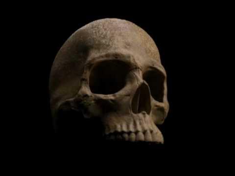 Human skull 3d animation thumbnail