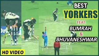 Top_10_Best_Yorkers_In_Cricket_Ever_2018___Destructive_Yorkers__Royal Sports
