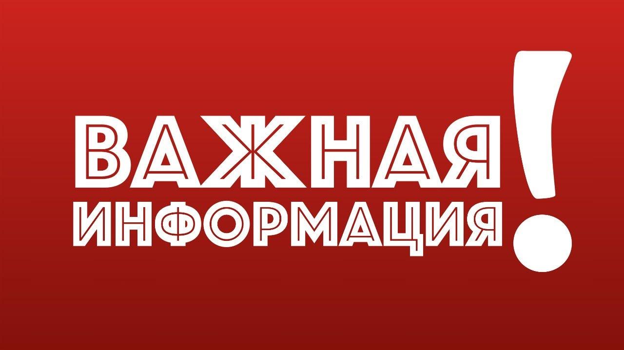 Пет шоп видео на русском видео смотреть