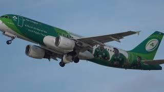 Aer Lingus EI205 Irish Rugby Team Special Livery # GREENSPIRIT Manchester AN To Dublin DUB 16/2/2019