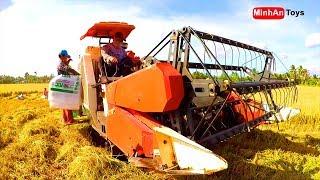 Rice Harvesters | Rice Combine Harvester | ♫ Song for kids in VietNam