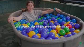 Chimpanzee Ball Pit Adventure!
