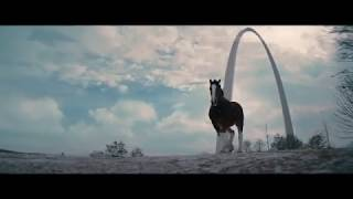 Beer Country | Budweiser
