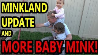More Baby Mink, MinkLand, and Rats Questions.