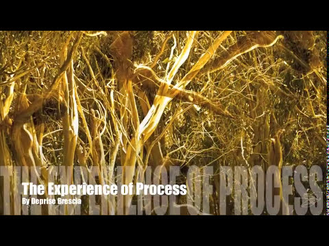 THE EXPERIENCE OF PROCESS - DEPRISE BRESCIA