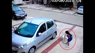 Horrific: How a dog brutally attacked a girl