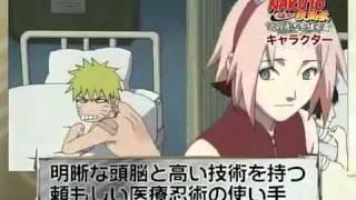 Naruto Shippuuden Inheritors of the Will of Fire