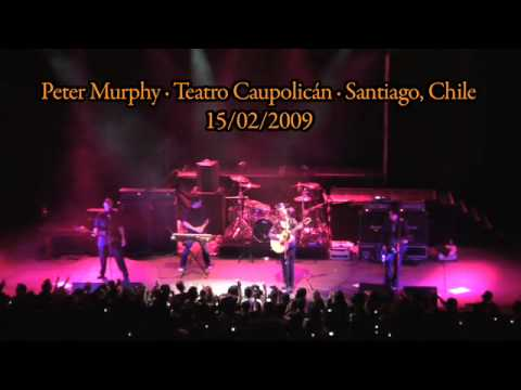 Peter Murphy en vivo - Strange Kind of Love - Santiago de Chile