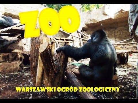 Варшавский зоопарк.Польша||Warszawski Ogród Zoologiczny
