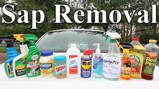 The BEST Tree Sap Removal Product for your Car is?