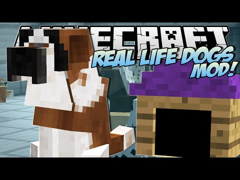 Minecraft   REAL LIFE DOGS MOD!! (Puppies. Kennels & More!)   Mod Showcase