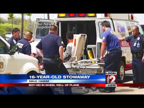 Teen stowaway survives flight to Hawaii in wheel well