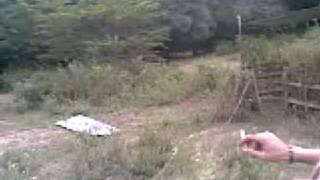 Cancha de Paintball Woodland Scenario Aragua - Venezuela