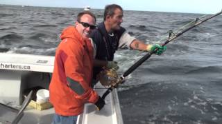 Bluefin Tuna Giant (750lbs) Caught off Prince Edward Island