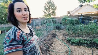 the ONE ACRE micro Farm | Anyone could do