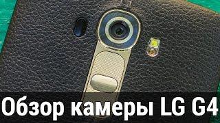 Что лучше iphone 6