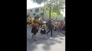 Brass Band Erschwil Marschmusik Musiktag 2014