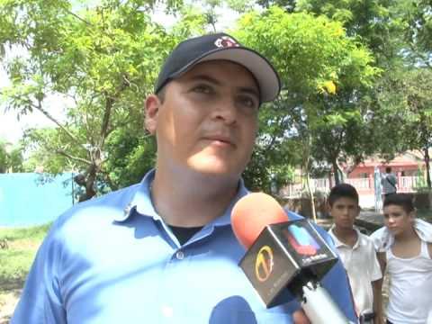 Atacan abejas a alumnos y maestros de secundaria de El Roble