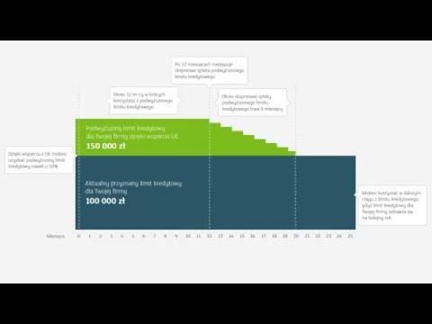 Przykładowa Symulacja Spłaty Kredytu Dla Firm Z Gwarancją COSME