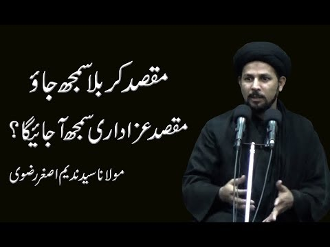 Maqsad Karbala Samjh Jao Maqsad Azadari Samjh Ajaega - Maulana Syed Nadeem Asgher Rizvi