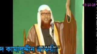 Sayed Kamaluddin Zafree
