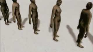 Human Evolution - İnsan Evrimi
