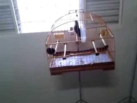 Trinca Ferro Fiote RÁpido De Roda video