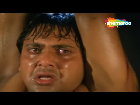 Dulaara (1994) - Bollywood Movie - Govinda - Karisma Kapoor - Farida Jalal - Gulshan Grover