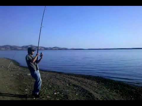 San luis reservoir for San luis reservoir fishing