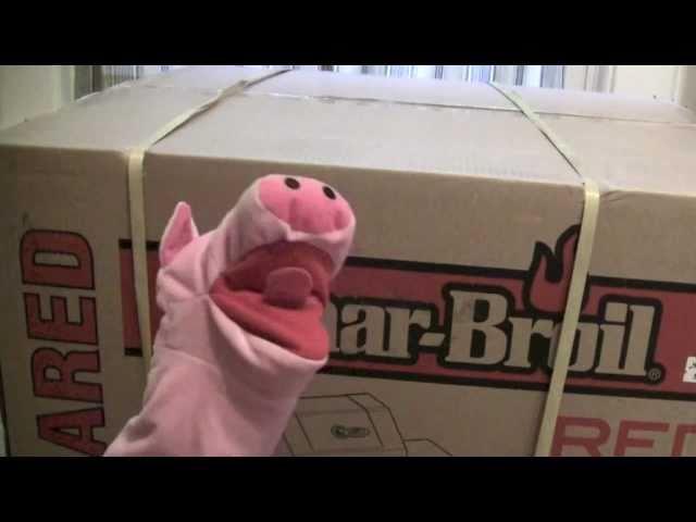 PIG & A BOX!