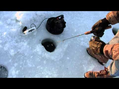 Ice fishing using a flasher to catch a crappie how to for Best ice fishing flasher