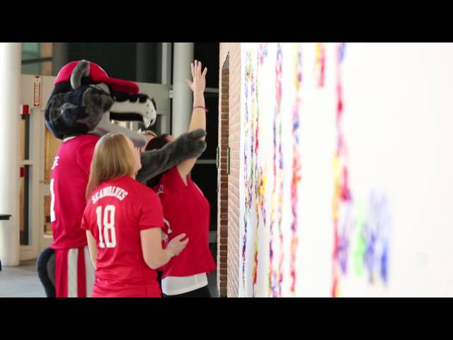 Stony Brook 2013 Holiday Video