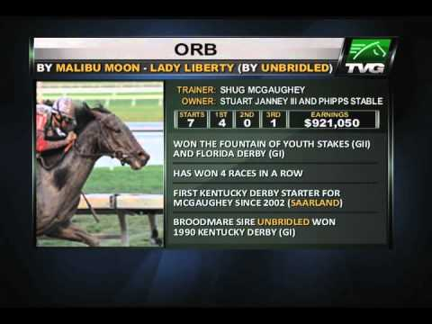 Orb: 2013 KY Derby Profile