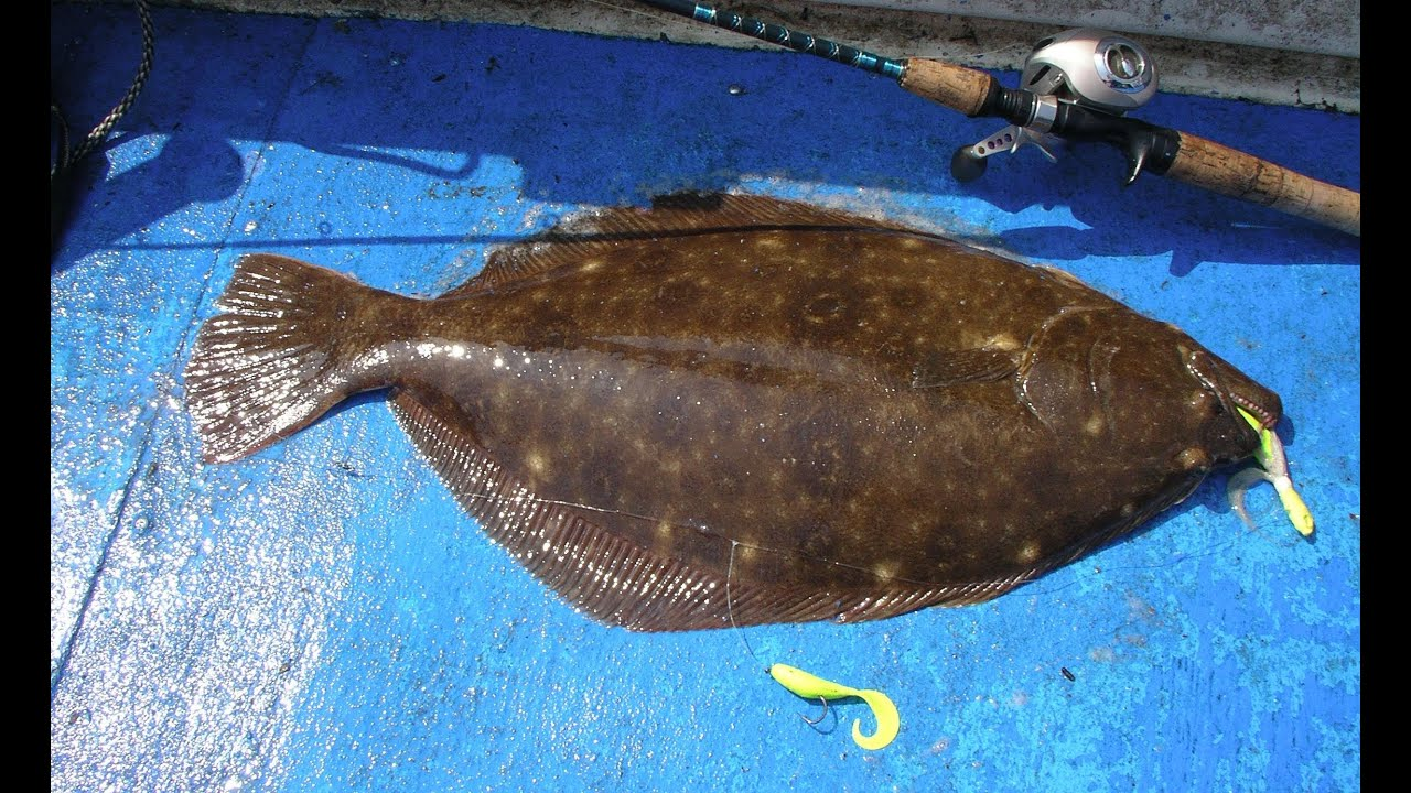 How to catch flounder with gulp part 1 youtube for Flounder fishing rigs