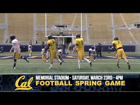 Cal Football: Spring Practice #12 Recap (3/18/2013)