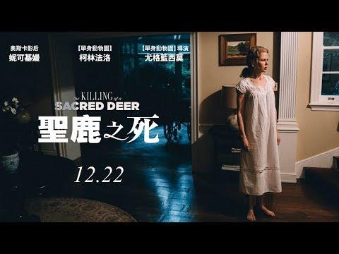 12.22《聖鹿之死》預告 ( 2 ) |單身動物園導演新作、坎城影展最佳劇本獎