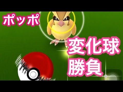 【ポケモンGO攻略動画】PK ポケモンGO変化球攻略勝負!CP高めのポッポをシュート回転で決めた!を実況した  – 長さ: 2:39。