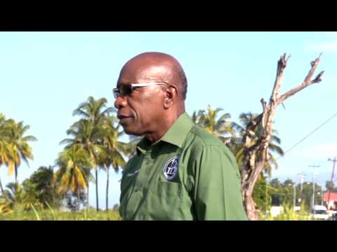 Jack Warner : No Ordinary Man