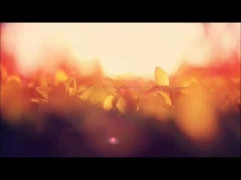 Alejandro Sanz - No me Compares ( vengo del aire ) letra