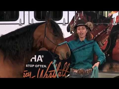 1. Stacy Westfall: Pre-trailer Loading Tips (1 of 10)