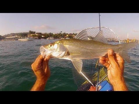 brudden nautica hunter fishing goliath