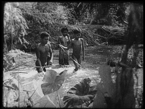 Orang asli in the prewar Malaysian  jungle
