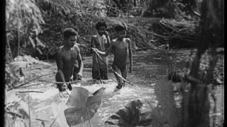 Orang asli in the prewar Malaysian  jungle