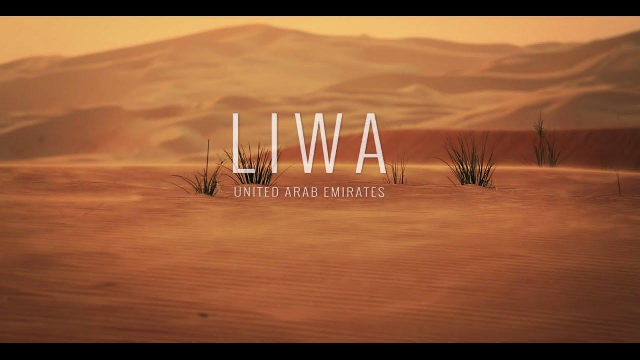 Google Camel - Street View in the Desert