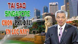 Tại sao Lý Hiển Long lại chọn Phủ Đầu Việt Nam vào lúc này?
