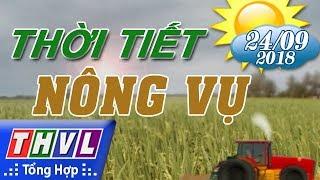 THVL | Thời tiết nông vụ (18h55 ngày 24/09/2018)
