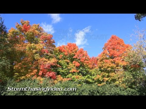 10/10/2014 Twin Cities Fall Colors