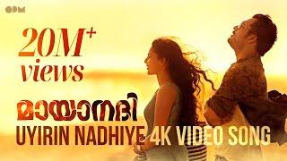 Uyirin Nadhiye Official 4K Song | Mayaanadhi | Aashiq Abu | Tovino Thomas | Rex Vijayan