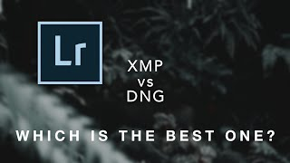 .dng V/s .xmp | which is best for Lightroom mobile? | Small comparison